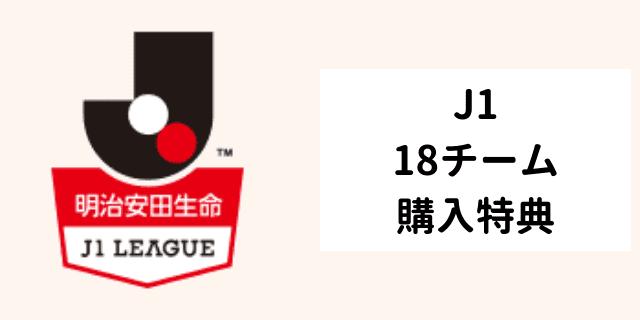 年間視聴パス特典 j1 全チーム